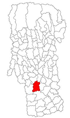 Localizarea orașului Costești pe harta județului Argeș
